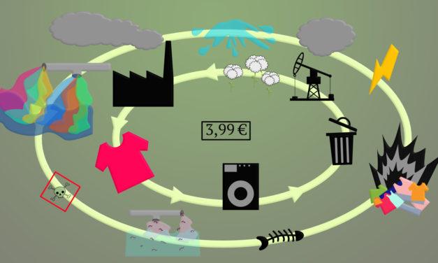 Welchen Preis zahlt die Umwelt?