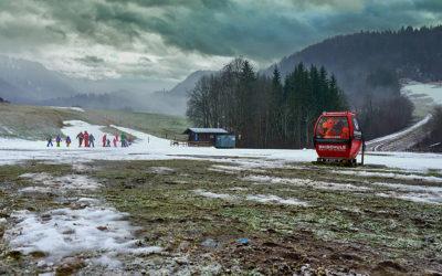 Skifahren im Grünen